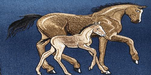 horse-family-din